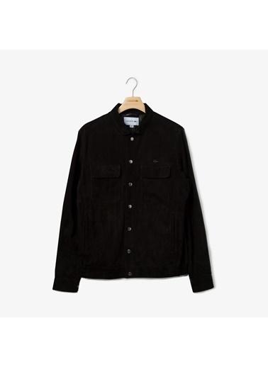 Lacoste Ceket Siyah